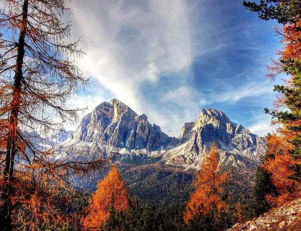 dolomiti-estate-val-di-fassa-appartamenti-le-rose-1_800x534